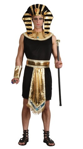 Plus size Egyptian King fancy dress costume